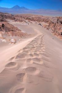 Chili-desert